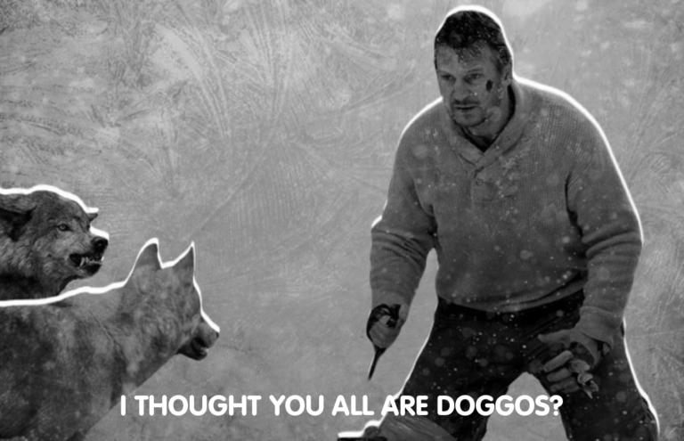 اشتباه سگی